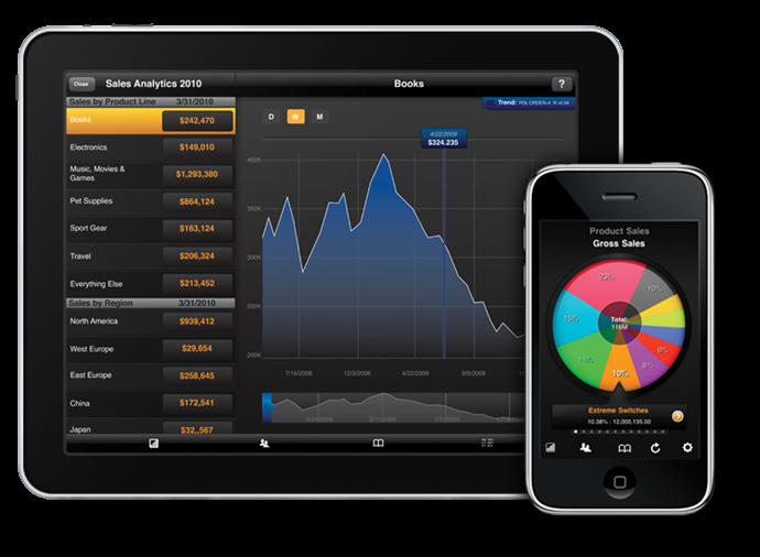 Roambi Visualizer for iPad